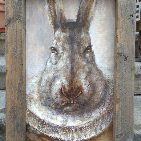 portret królika